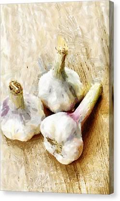 Three Garlic Bulbs On Wood Painting Canvas Print