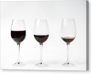 Three Glasses Of Wine  Canvas Print by Patricia Hofmeester