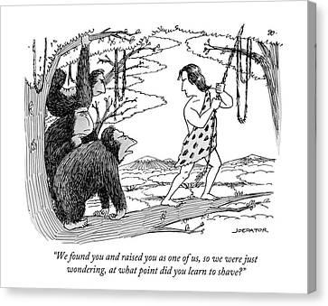 Three Gorillas Talk To Tarzan Canvas Print