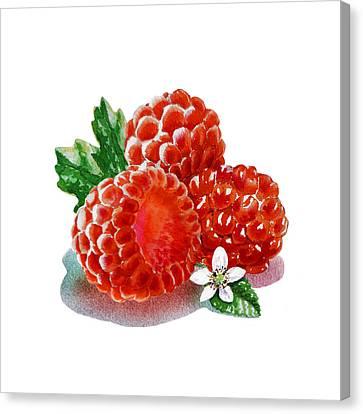 Canvas Print featuring the painting Three Happy Raspberries by Irina Sztukowski