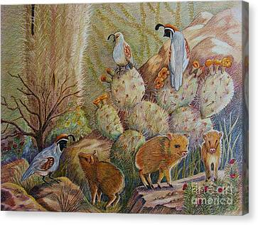 Quail Canvas Print - Three Little Javelinas by Marilyn Smith