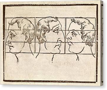 Three Nose Types Canvas Print by Middle Temple Library