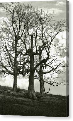 Long-lived Canvas Print - Three On A Hill by Jack Zulli