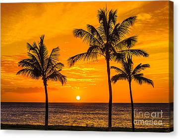 Three Palms Golden Sunset In Hawaii Canvas Print