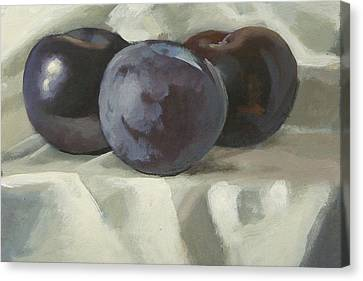 Three Plums Canvas Print by Peter Orrock