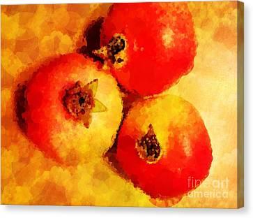 Three Pomegranates Canvas Print by Mary Machare