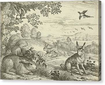 Three Rabbits In A Landscape, Jan Griffier Canvas Print by Jan Griffier (i) And Pierce Tempest