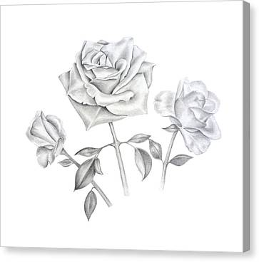 Canvas Print featuring the drawing Three Roses by Elizabeth Lock