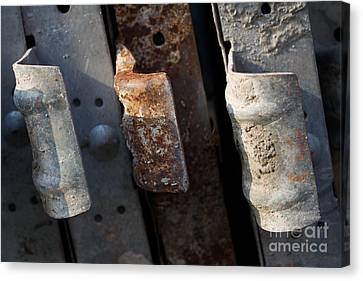 Three Shades Of Rust Canvas Print