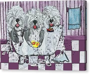 Three Sheepdogs In A Tub Canvas Print