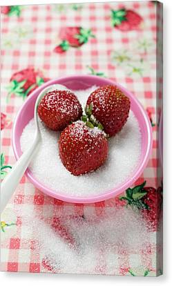 Three Strawberries In A Small Dish Of Sugar Canvas Print