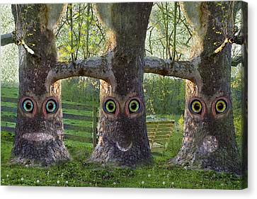 Three Trees Canvas Print by Betsy Knapp