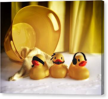 Three Wise Duckies Canvas Print by Mark Fuller