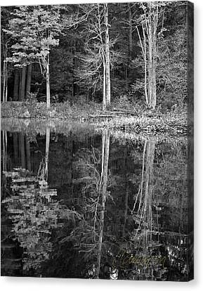 Canvas Print featuring the photograph Threes by Tom Cameron