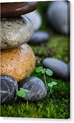 Thriving Canvas Print
