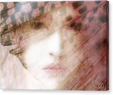Through A Butterfly Wing Canvas Print by Gun Legler