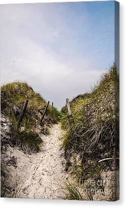Through The Dunes Canvas Print by Hannes Cmarits