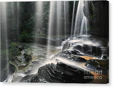 Through The Falling - Colour Canvas Print by Michael Howard