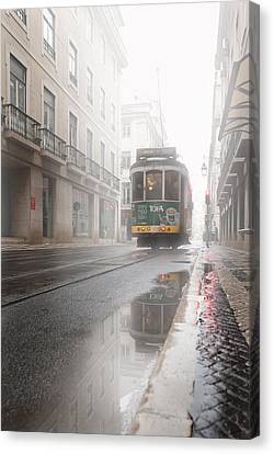 Through The Fog Canvas Print by Jorge Maia