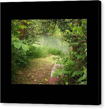 Canvas Print featuring the photograph Through The Forest At Water's Edge by Absinthe Art By Michelle LeAnn Scott