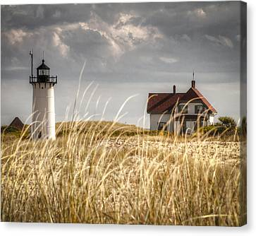 Race Point Light Through The Grass Canvas Print by Brian Caldwell
