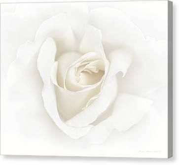Misty Ivory White Rose Flower Canvas Print