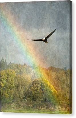 Eagle In Flight Canvas Print - Through The Rainbow by Angie Vogel