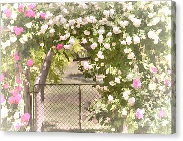 Through The Rose Arbor Canvas Print by Elaine Teague