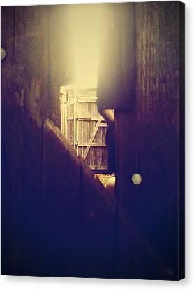Through The Side Gate Canvas Print by Matt Lindley