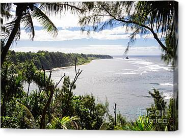 Cost Line Canvas Print - Through The Trees - A Remote Coastline On A Tropical Island by David Hill