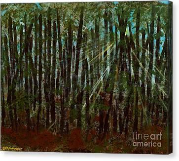 Through The Trees Canvas Print by Hillary Binder-Klein