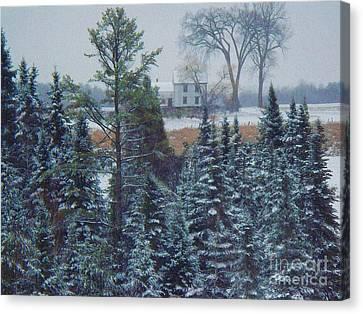 Through The Trees Canvas Print by Joy Nichols