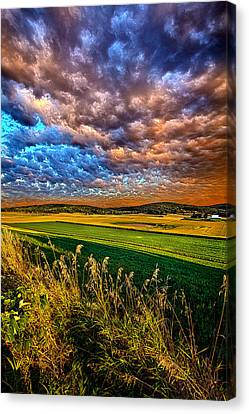 Through The Valley Canvas Print by Phil Koch