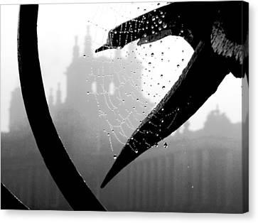 Through The Web Canvas Print