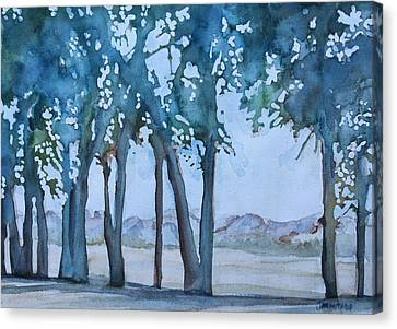 Through The Wind Break Canvas Print by Jenny Armitage