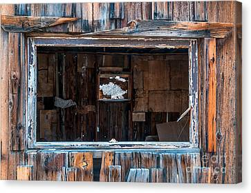 Cabin Window Canvas Print - Through The Window by Cat Connor