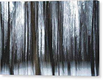 Canvas Print featuring the photograph Through The Woods by Steven Huszar