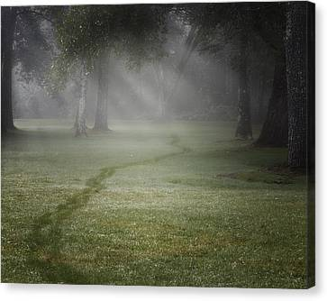 Light Rays Canvas Print - Thru The Fog by Bill Wakeley