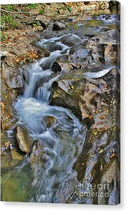 Thru The Rocks Canvas Print by Butch Phillips