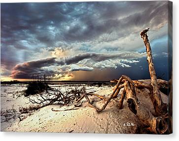 Canvas Print featuring the photograph Thunder Storm Clouds Desert Landscape Sand Dune Art Prints by Eszra Tanner