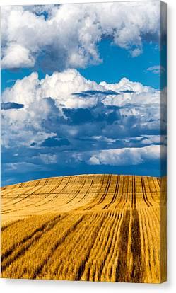 Thunderstorm Pennington County Sd Canvas Print by Troy Montemayor