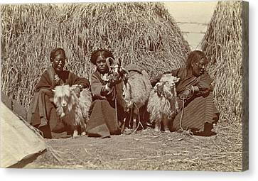 Tibetan Women With Goats For Haystacks Canvas Print