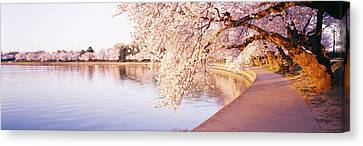 Tidal Basin, Washington Dc, District Of Canvas Print by Panoramic Images