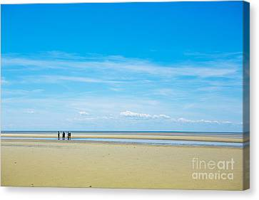 Cape Cod Bay Canvas Print - Tidal Flats Of Cape Cod by Diane Diederich