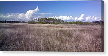 Canvas Print featuring the photograph Tidal Marsh On Roanoke Island by Greg Reed