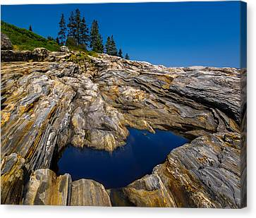 Canvas Print featuring the photograph Tidal Pool by Steve Zimic