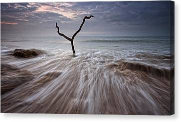 Tidal Rush Canvas Print by Mark Leader
