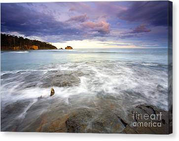 Tide Covered Pavement Canvas Print by Mike  Dawson