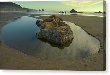 Canvas Print featuring the photograph Tidepool Monolith by Arthur Fix