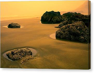 Tidepools At Dusk Canvas Print by Bonnie Bruno